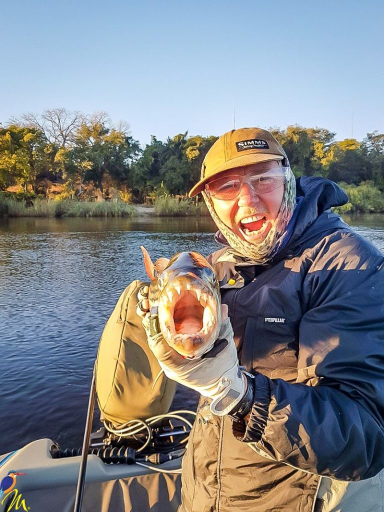 A close up of the mouth of a fly caught Zambezi Tigerfish
