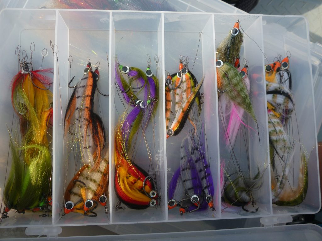 Tigerfish flies