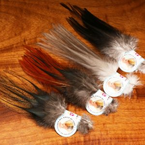 Gallo De Leon Saddle Feathers - Collective